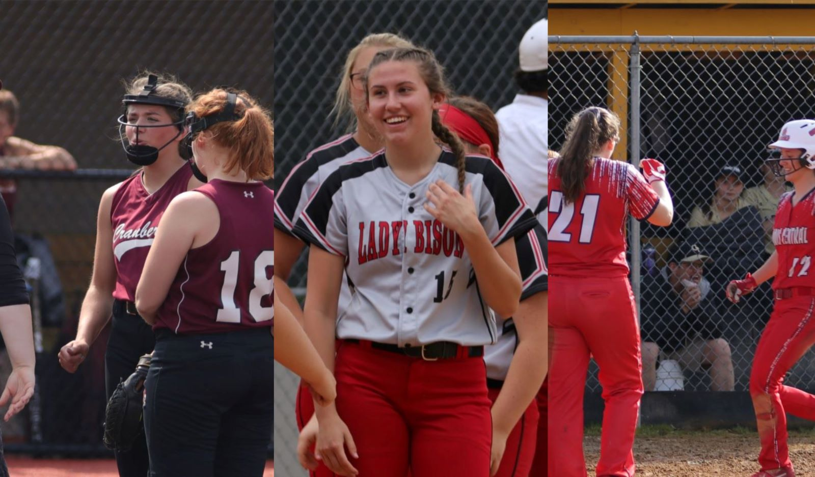 Dcc Cranberry Clearfield Seek Piaa Softball Championship Game Bids